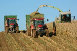 Московская область получила в собственность сельскохозяйственное предприятие